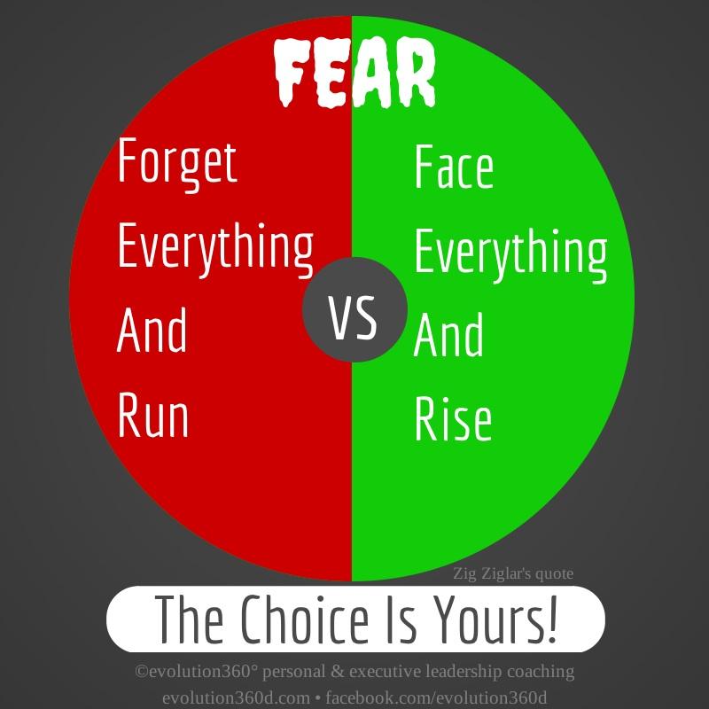 Fear-Zig-Ziglar-
